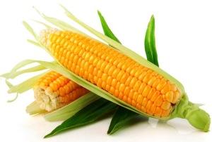 29951-corn