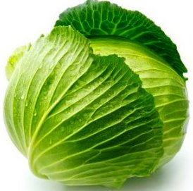 cabbage_on_white_background_s