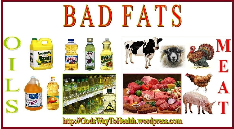 good fats vs bad fats clws 6