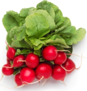 radish nutrition facts_health benefits of radishes
