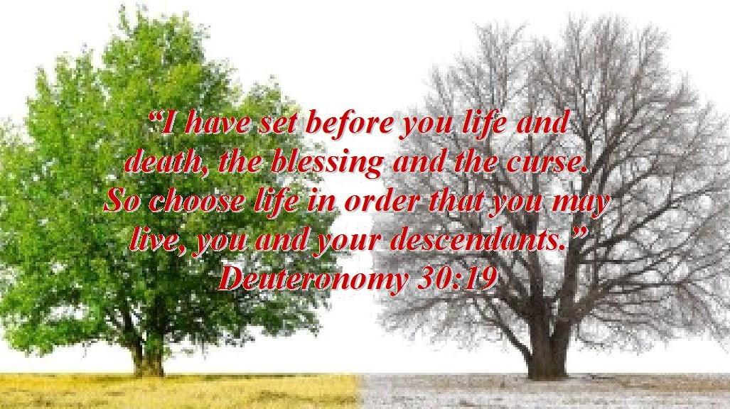 CHOOSE LIFE OR DEATH PDF