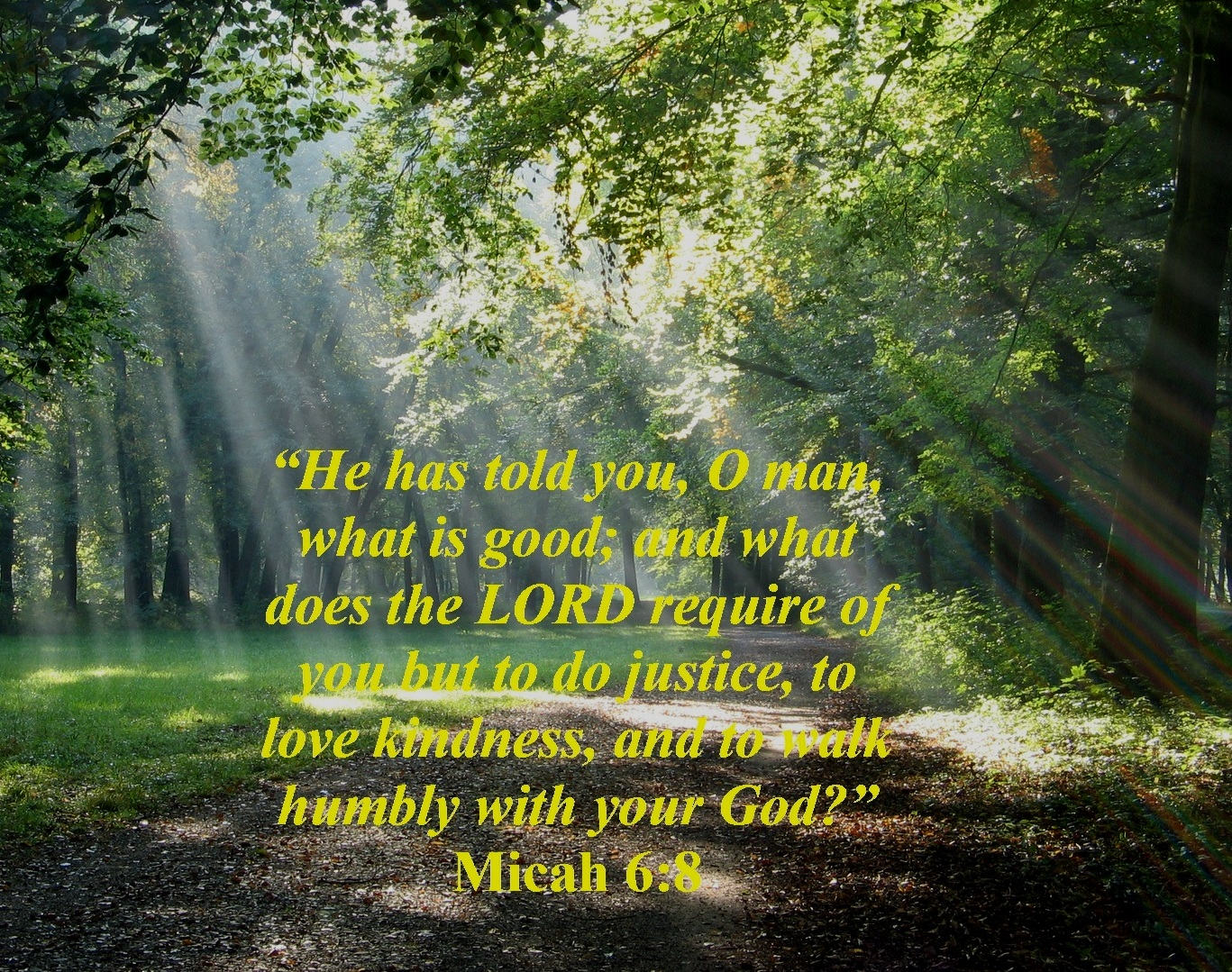 What Does God Require Of His People Micah 6 8 Mission