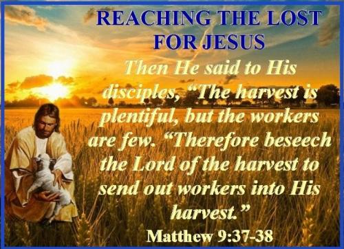 Matthew 9 vs 37-38