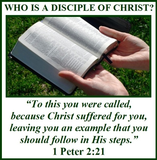 Who is a disciple of Christ
