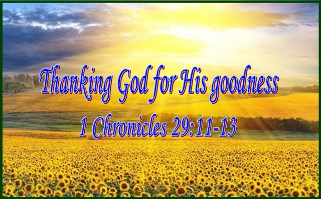 THANKING GOD FOR HIS GOODNESS – 1 Chronicles 29:11–13 | Mission Venture  Ministries