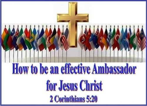 Ambassador e