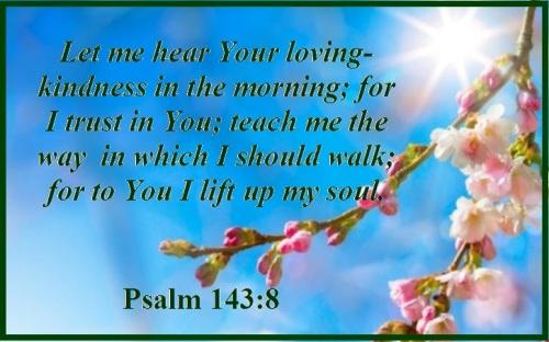 Psalm 143 vs 8