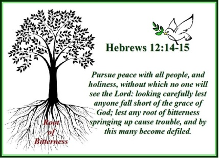 DO NOT LET THE ROOT OF BITTERNESS SPRING UP, BUT PURSUE PEACE WITH ALL  PEOPLE – Hebrews 12:14-15 | Mission Venture Ministries