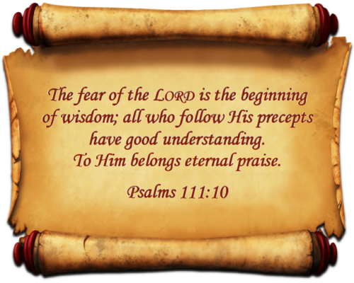 """the fear of the lord is the beginning of wisdom """"the fear of the lord is the beginning of wisdom, and the knowledge of the holy one is insight""""—proverbs 9:10."""